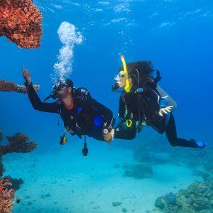 Discover Scuba Diving from Safaga Port