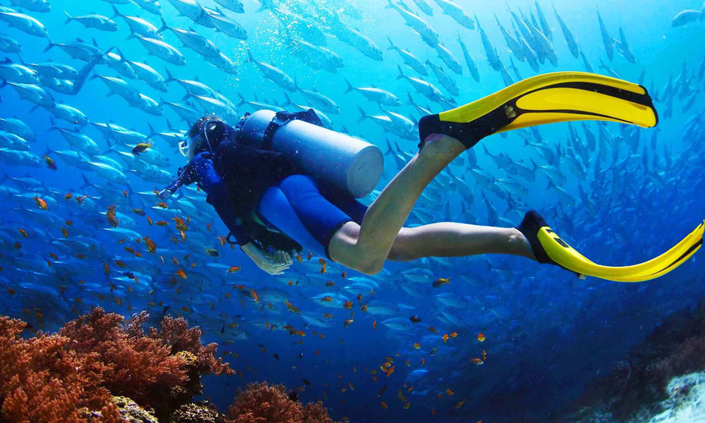 Son Dijou Diving Center Hurghada - Hurghada Diving Sites - Egypt Tours Porta