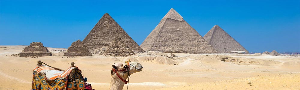 Day One:Safaga to Cairo - Visit the Pyramids & Egyptian Museum
